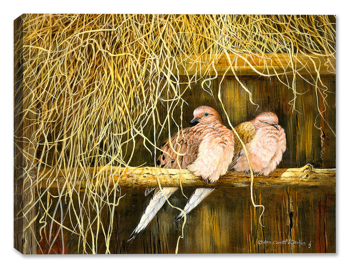 Feather Bed Mourning Doves - Canvas Art Plus