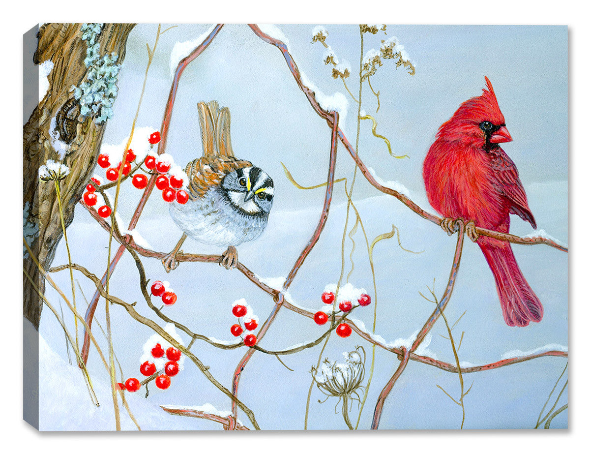 Fence line Cardinal by Carol Decker - Canvas Art Plus