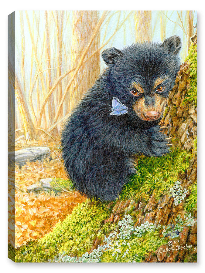 The Bear and the Butterfly - Canvas Art Plus