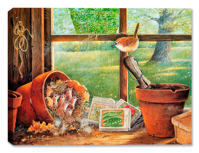 Garden Shed Seedlings - Carolina Wren - Canvas Art Plus