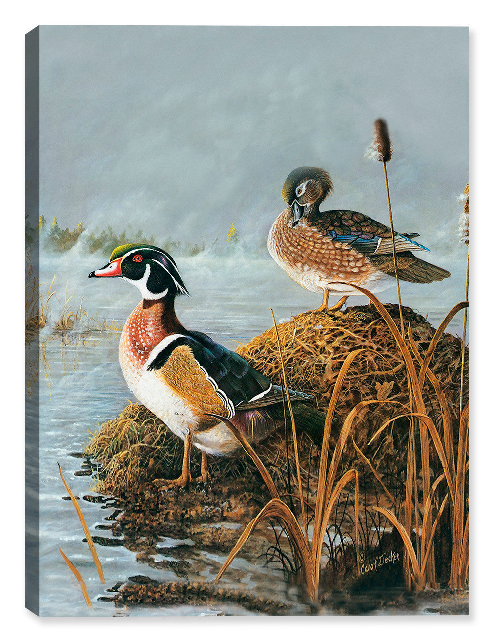 Ghost Lake Woodies - Canvas Wrap - Canvas Art Plus