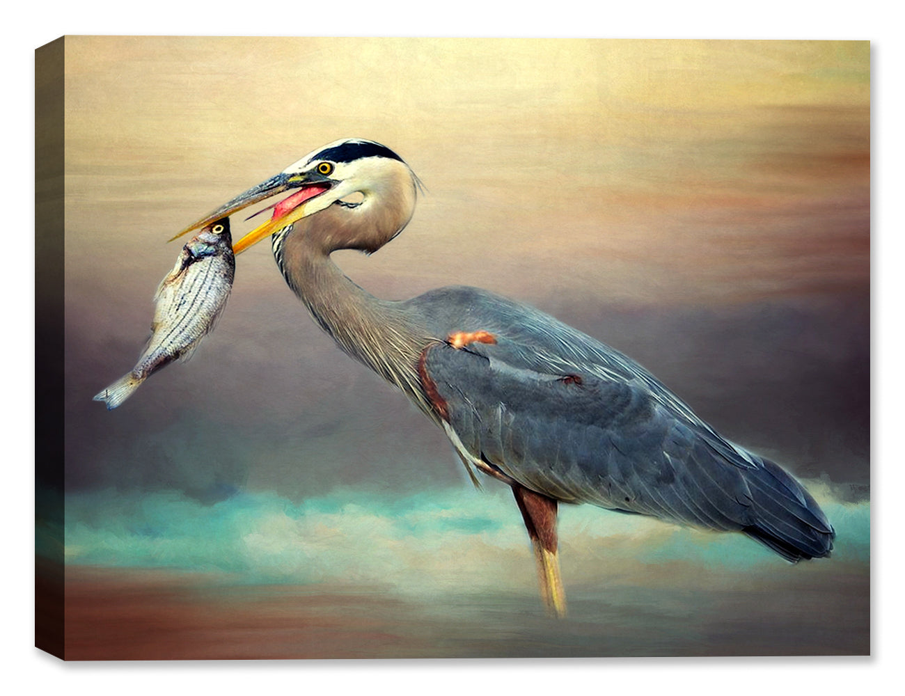 Heron Fishing - Canvas Art