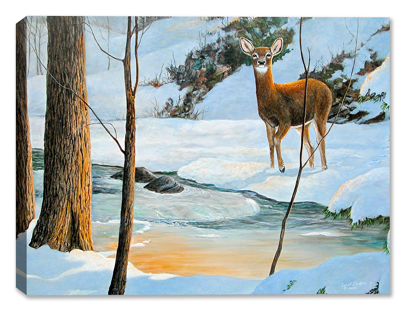 Icy Glow Doe - by Carol Decker - Canvas Art Plus