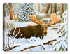 Moose - Luxury Accommodations - Canvas Art Plus