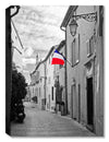 French Flag -  Indoor Outdoor Art