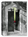 French Gate -  Indoor Outdoor Art