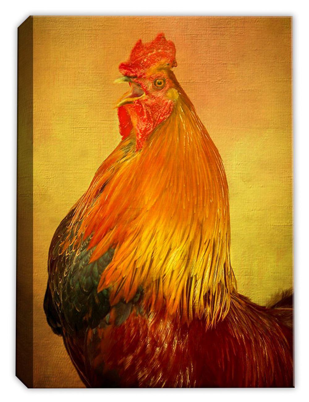 Mr. Rooster - Canvas Art