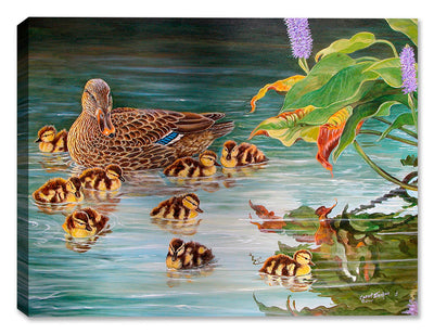 New Family Mallards by Carol Decker - Canvas Art Plus