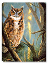 Owl Common Ground - Canvas Art Plus