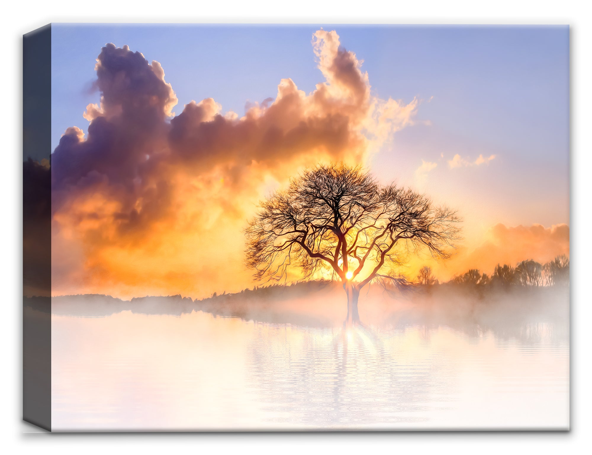 Fog Water & Tree - Canvas Wall Art