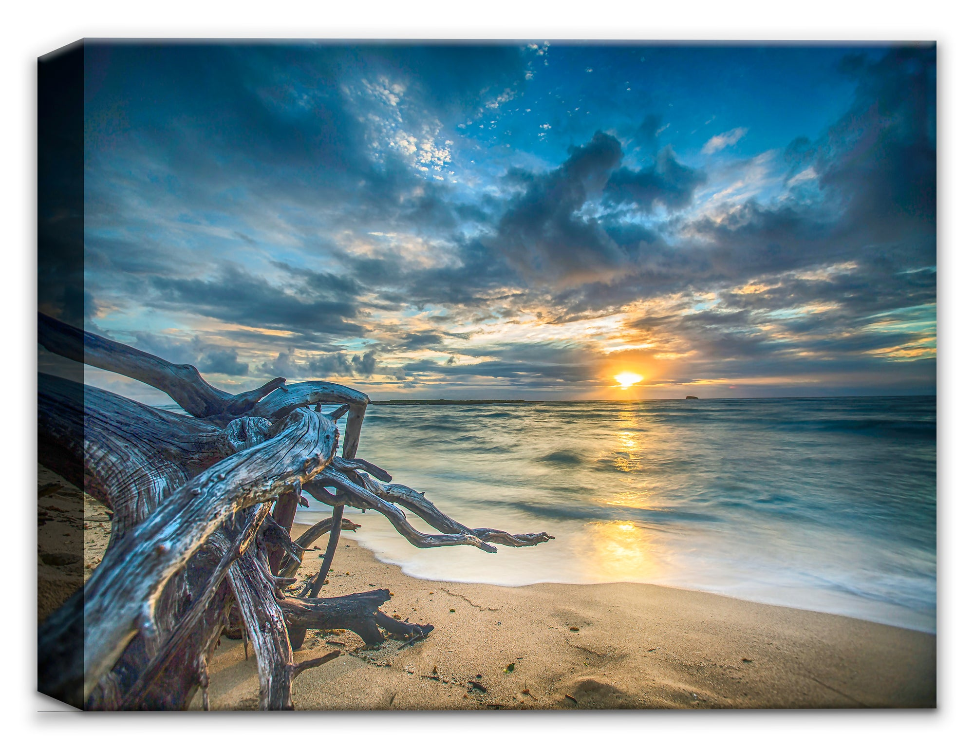 Driftwood, Beach & Ocean at Dawn - Fine Art Photography