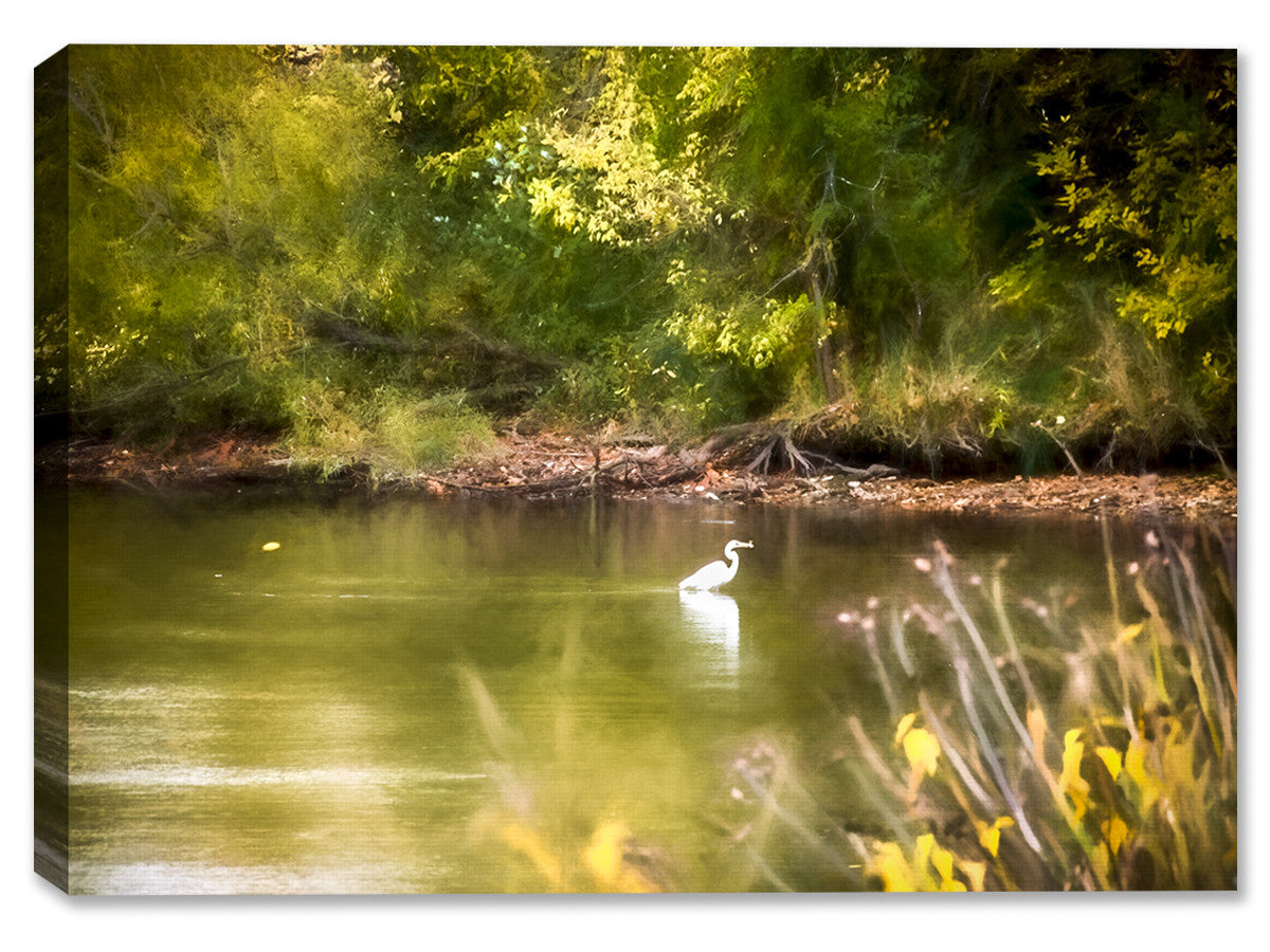 White Egret on Summer Day - Canvas Art Print - Canvas Art Plus