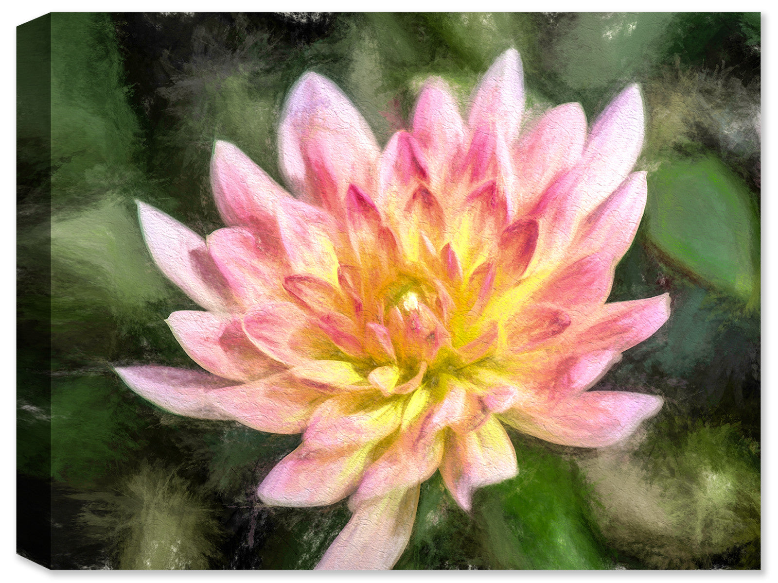 Dahlia #1  - Ink on Fine Art Canvas - Canvas Art Plus