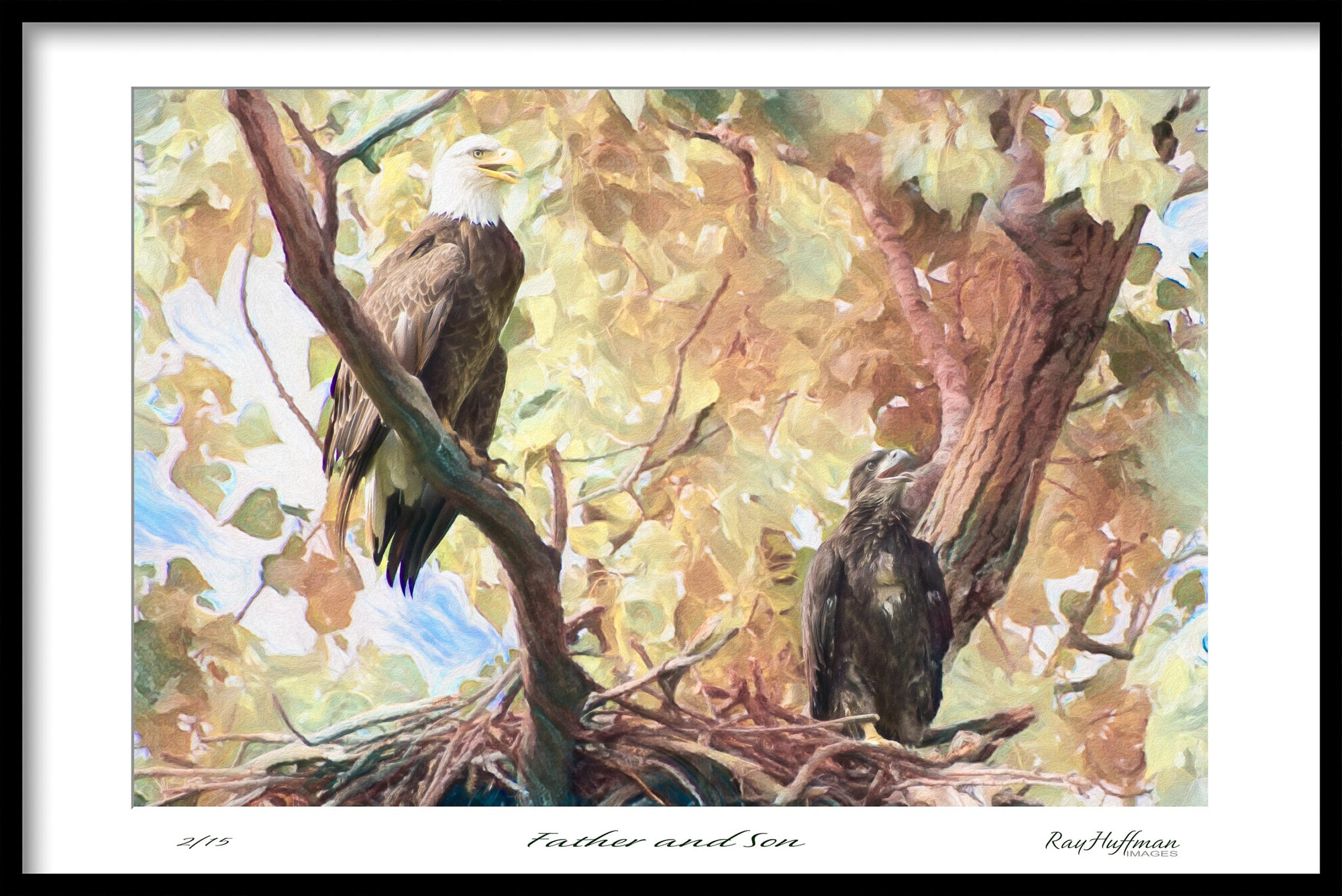 Father & Son Eagles - Painting on Canvas by Ray Huffman