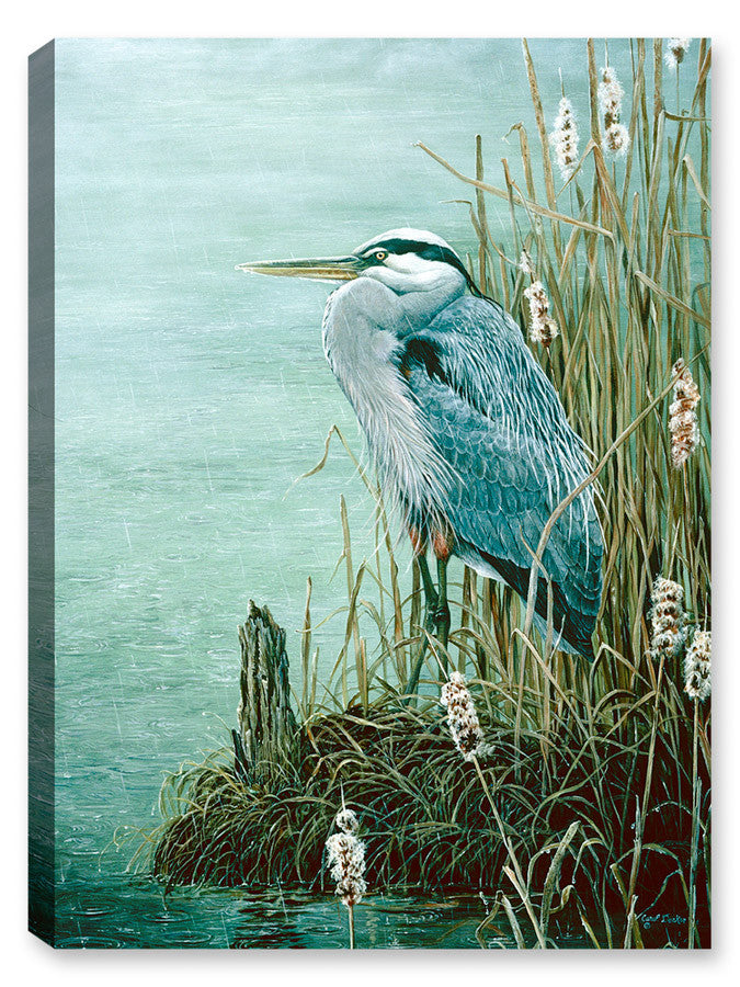 Blue Heron - Rainy Day - Canvas Art Plus