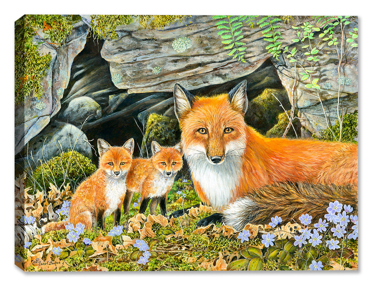 Red Fox Family by Carol Decker - Canvas Art Plus