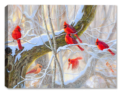 Red Letter Day - Cardinals - Canvas Art Plus
