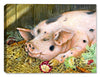 Salad Bar - Pig - Canvas Art Plus