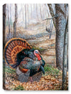 Spring Rendenvous Turkey - Canvas Art Plus