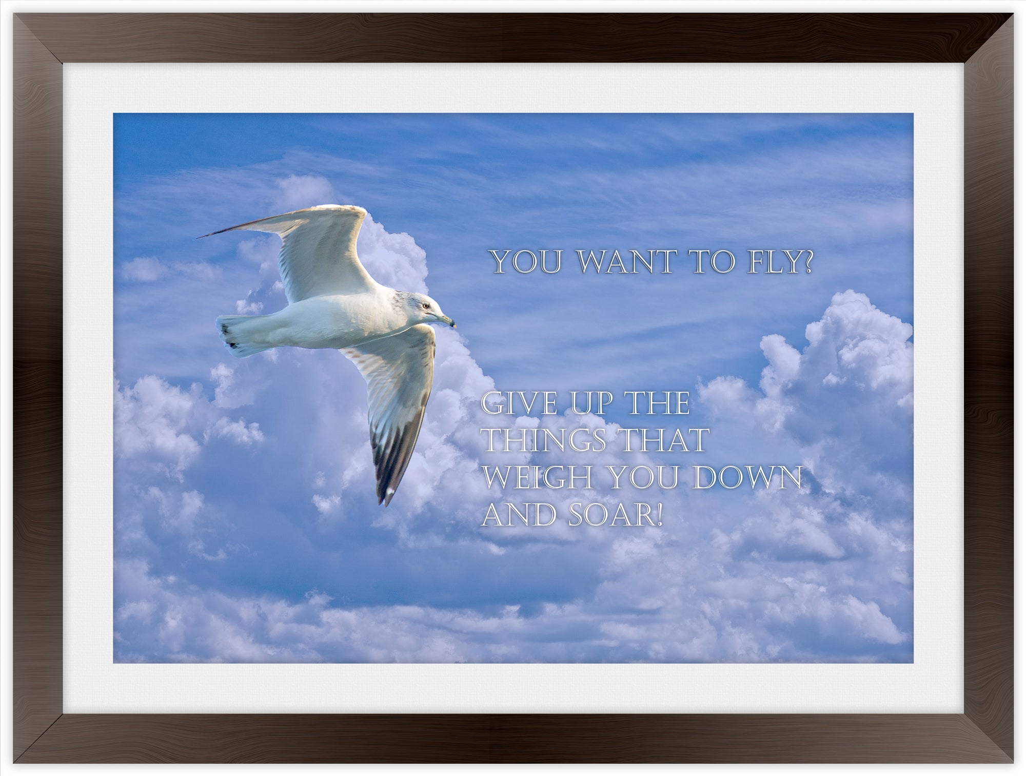 Want to Fly? - Inspirational Frame Art Giclee'