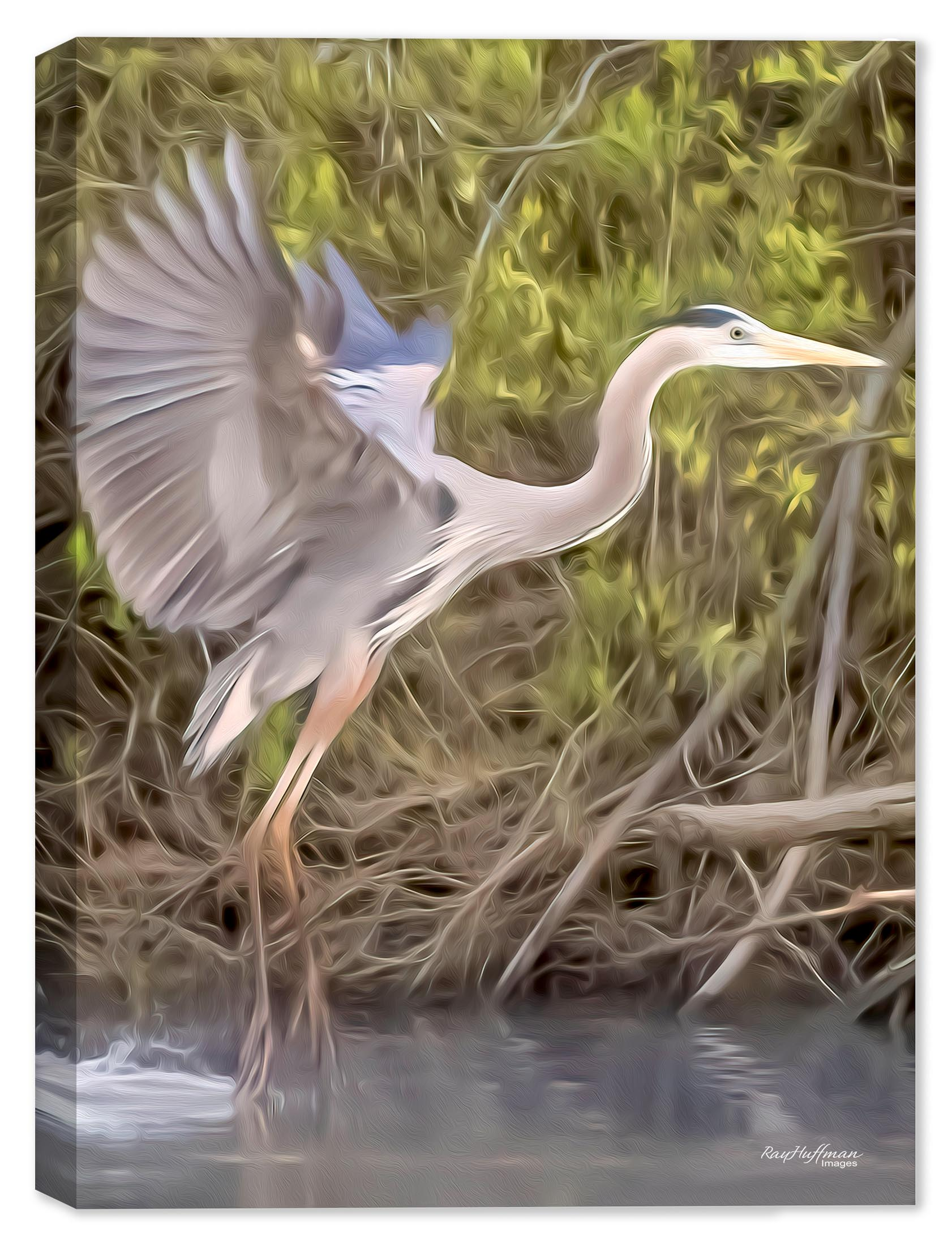 White Egret Painting on Canvas
