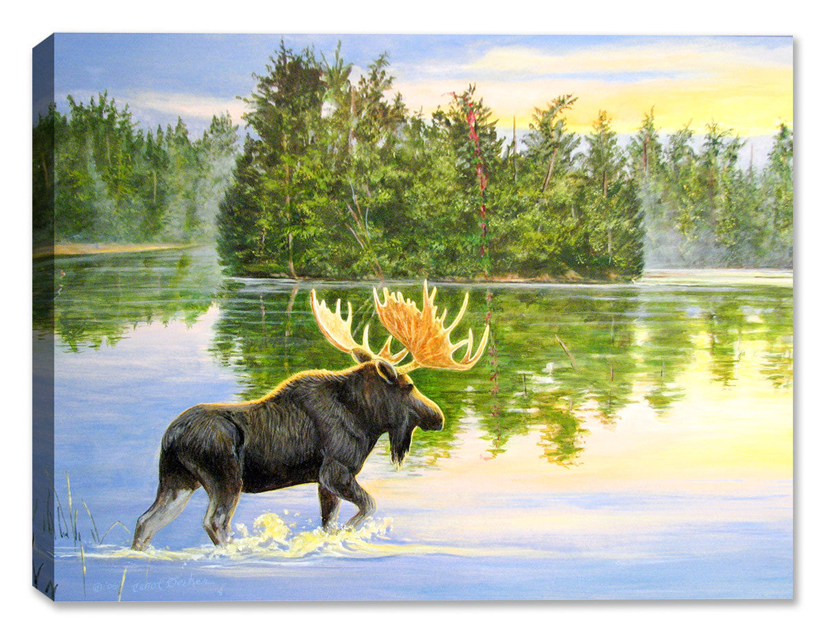 Wilderness Lake - Moose Painting - Canvas Art Plus