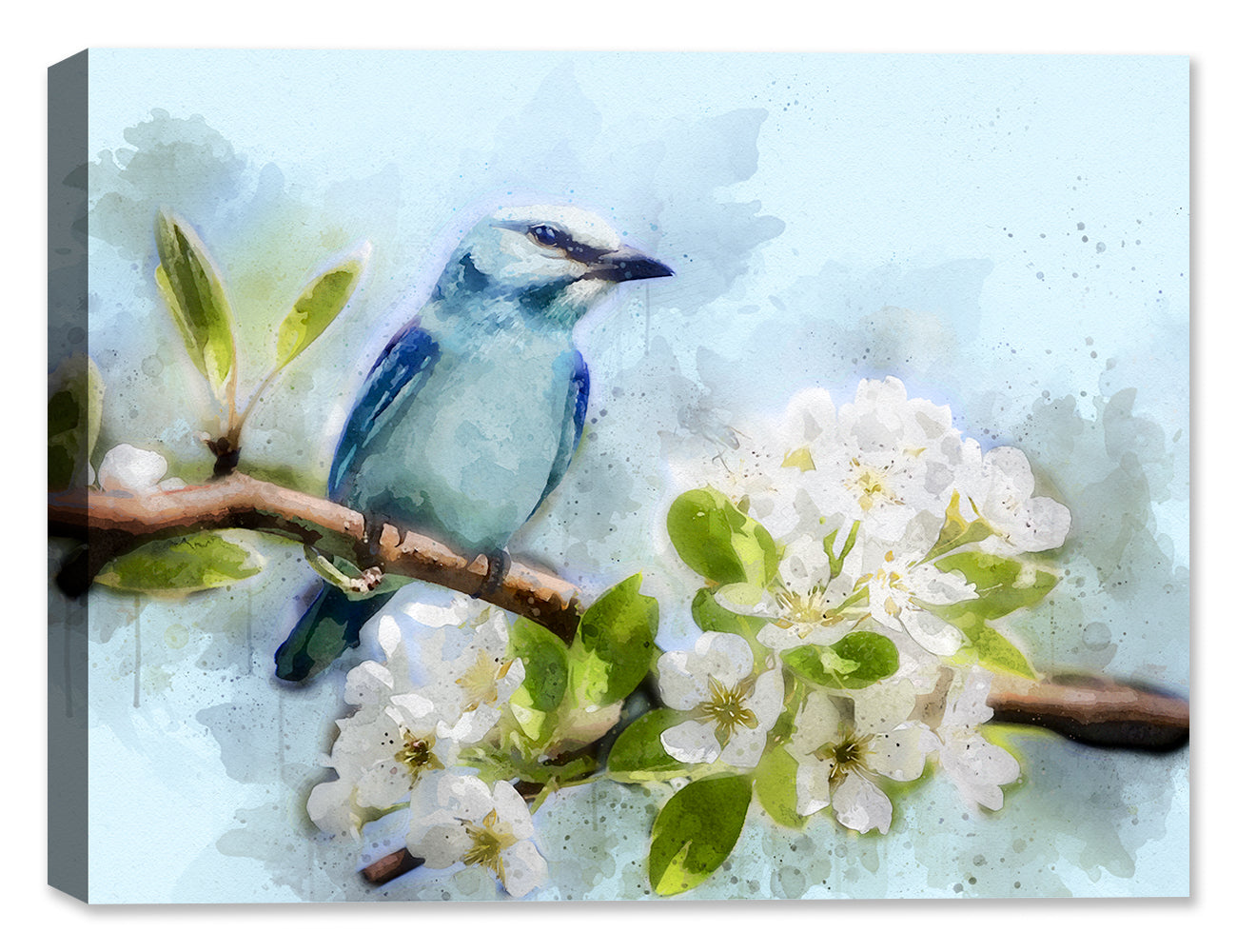 Blue Bird and Dogwood - Canvas Art