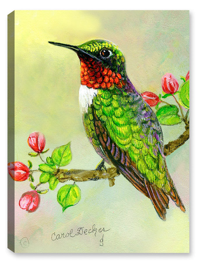 Hummingbird and Apple Tree - Canvas Art Plus
