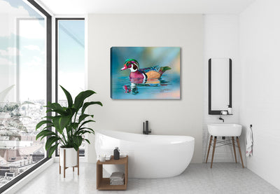 Wood Duck On Water - Canvas Print