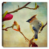 Cedar Waxwing Painted - Canvas Art