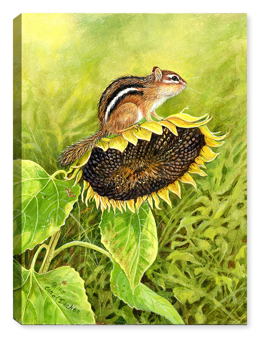 Chipmunk on Sunflower Painting by Carol Decker - Canvas Art Plus