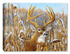 Crowning Glory - Buck in Field - Canvas Art Plus