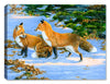 Flirt Fox Canvas Art - by Carol Decker - Canvas Art Plus