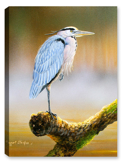 Great Blue Heron on Branch - Canvas Art Plus