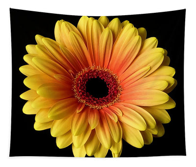 Sunflower On Black - Tapestry