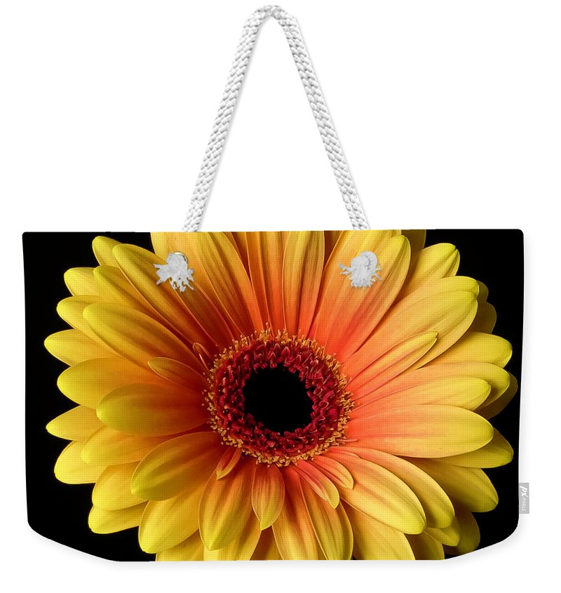 Sunflower On Black - Weekender Tote Bag