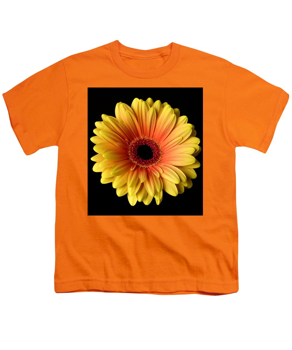 Kid's T Shirts with Printed Art