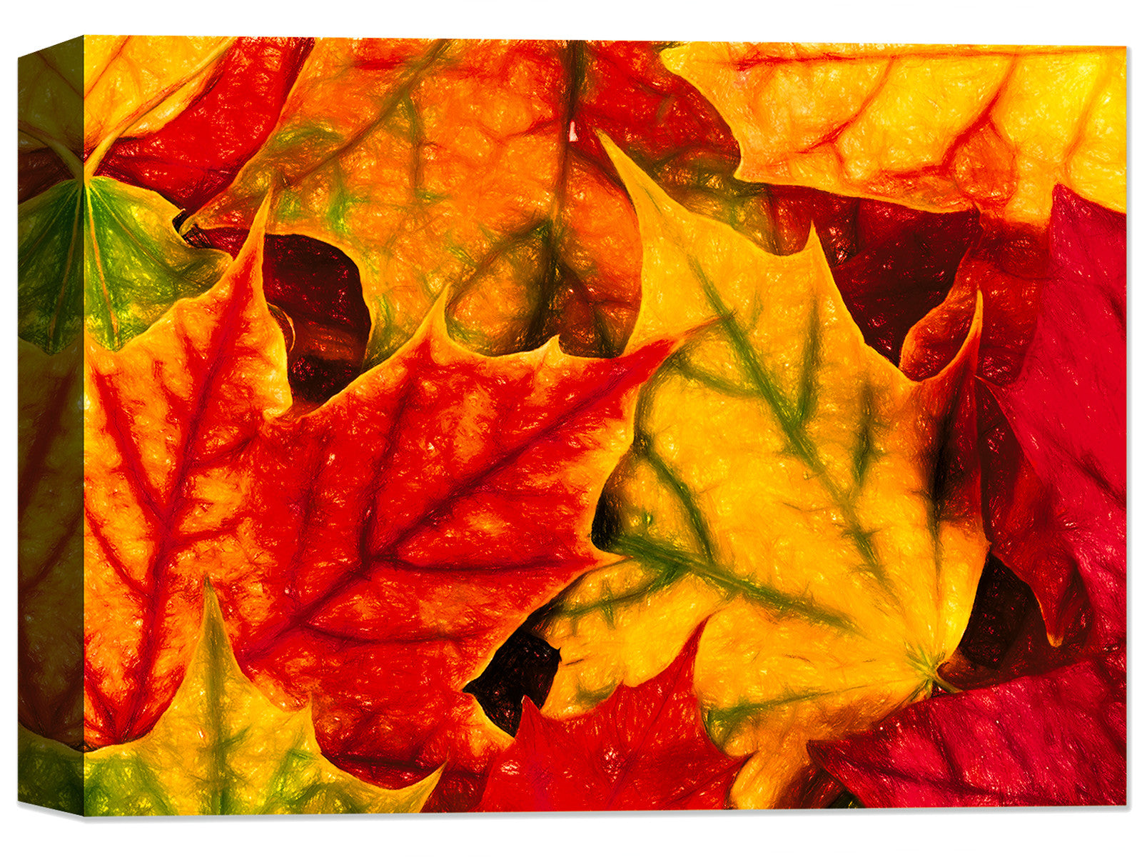 Fall Leaves - Fine Art Canvas Print - Canvas Art Plus