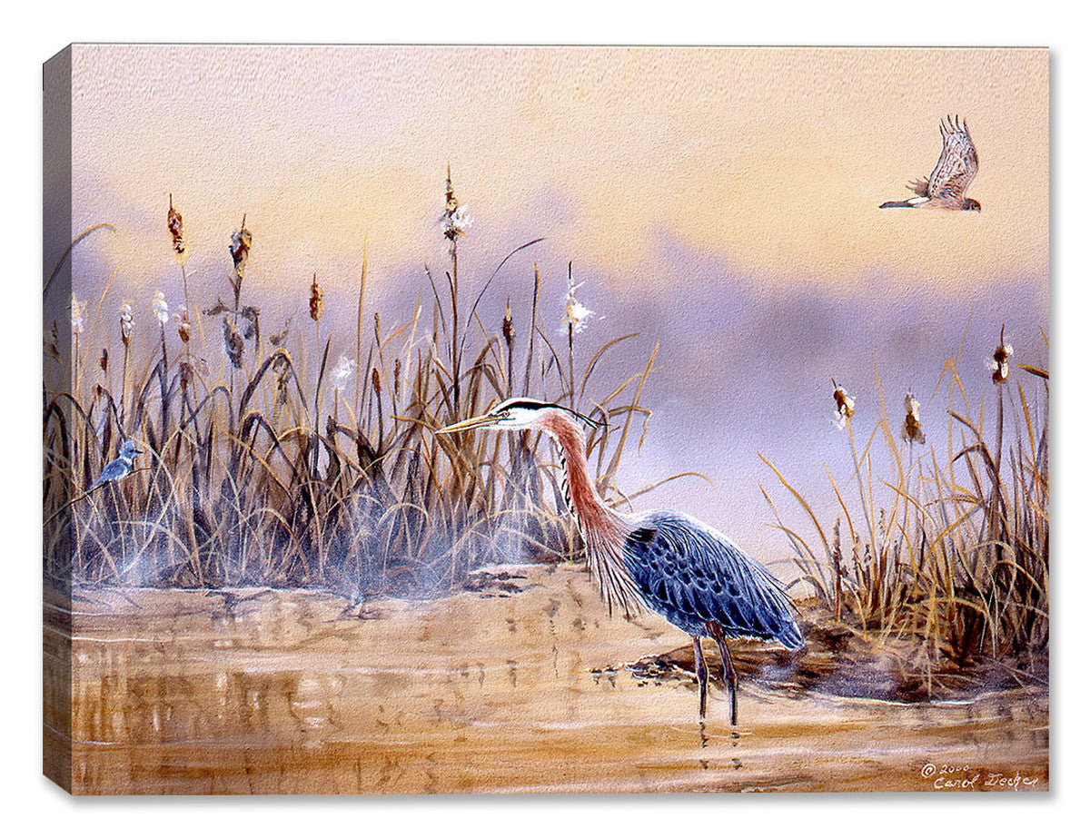 Blue Heron in Wetlands - Painting by Carol Decker - Canvas Art Plus