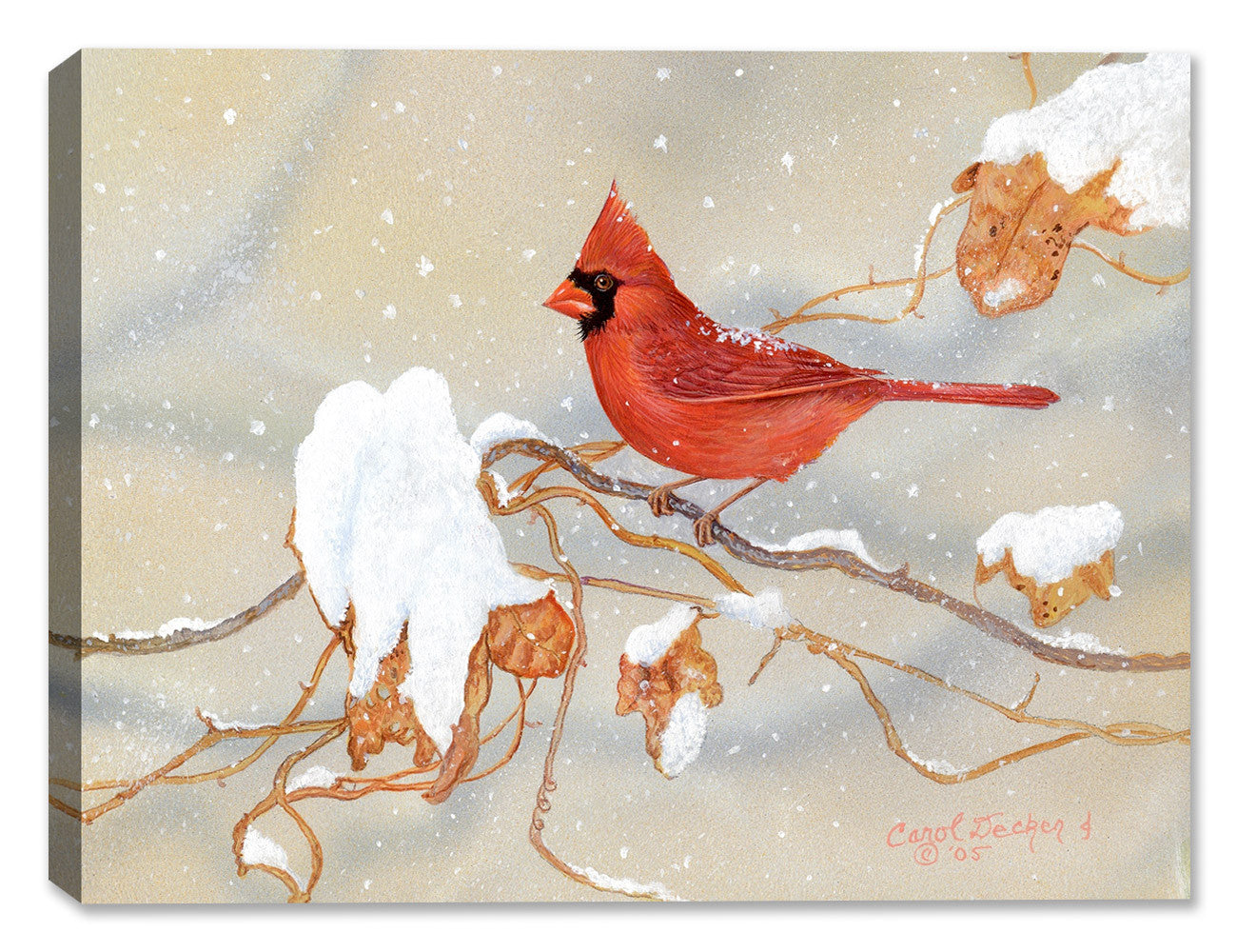 Winter Beauty Cardinal - Painting by Carol Decker - Canvas Art Plus