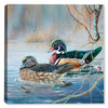 Wood Ducks and Bobber II - Canvas Art Plus