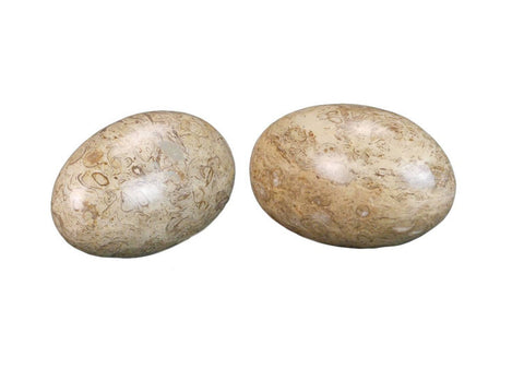 Two Orbicular Marble Eggs