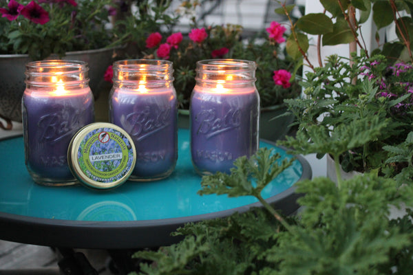 Natural Rosemary & Sage Essential Oil Mosquito Repellent Candle (Set of 3)
