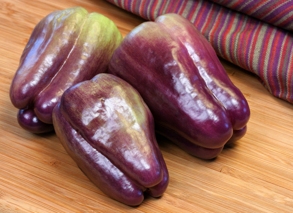 Purple Beauty Bell Pepper Two Plants – Non-GMO, Ripens Green to Purple