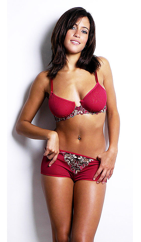 Women's Bra Set - Red Embroidered Fine Mesh Bra & Boy Short