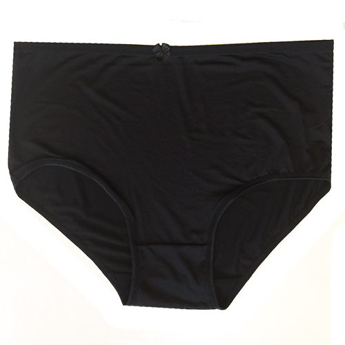 Women's Panty - Black Leopard Print Stretch Microfiber Spandex Brief
