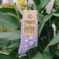 socks.purple.save.dogs.fair.trade.do.good.shop.ethical.clothing.on.tropical.plant