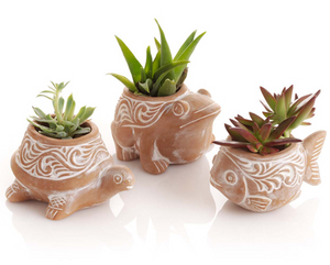 Terra Cotta Succulent Planters - do good shop ethical gifts