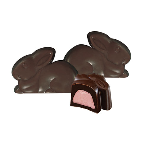 Dark Chocolate Raspberry Bunny & Buddies Minuette's