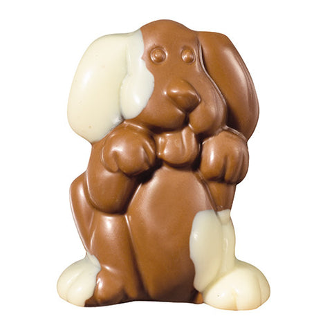 Milk / White Chocolate  Spotted Dog  2.25oz